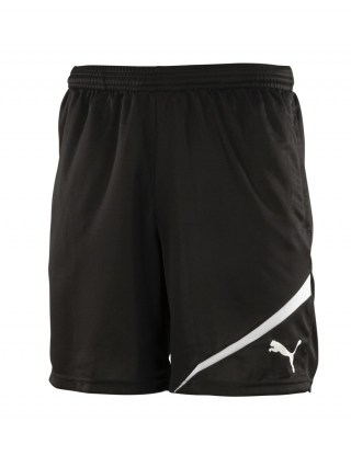 Puma Training Shorts (black)