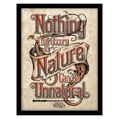 Fantastic Beasts Framed Print Nature 16 x 12
